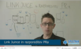 Link Juice in razporeditev PR-a