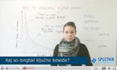 Kaj so longtail ključne besede?