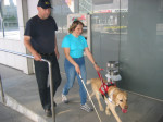 Sabina in Baron na treningu