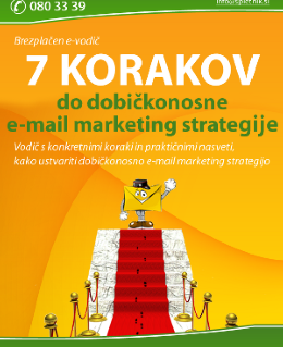 7 korakov do dobičkonosne e-mail marketing strategije Prenesi e-priročnik