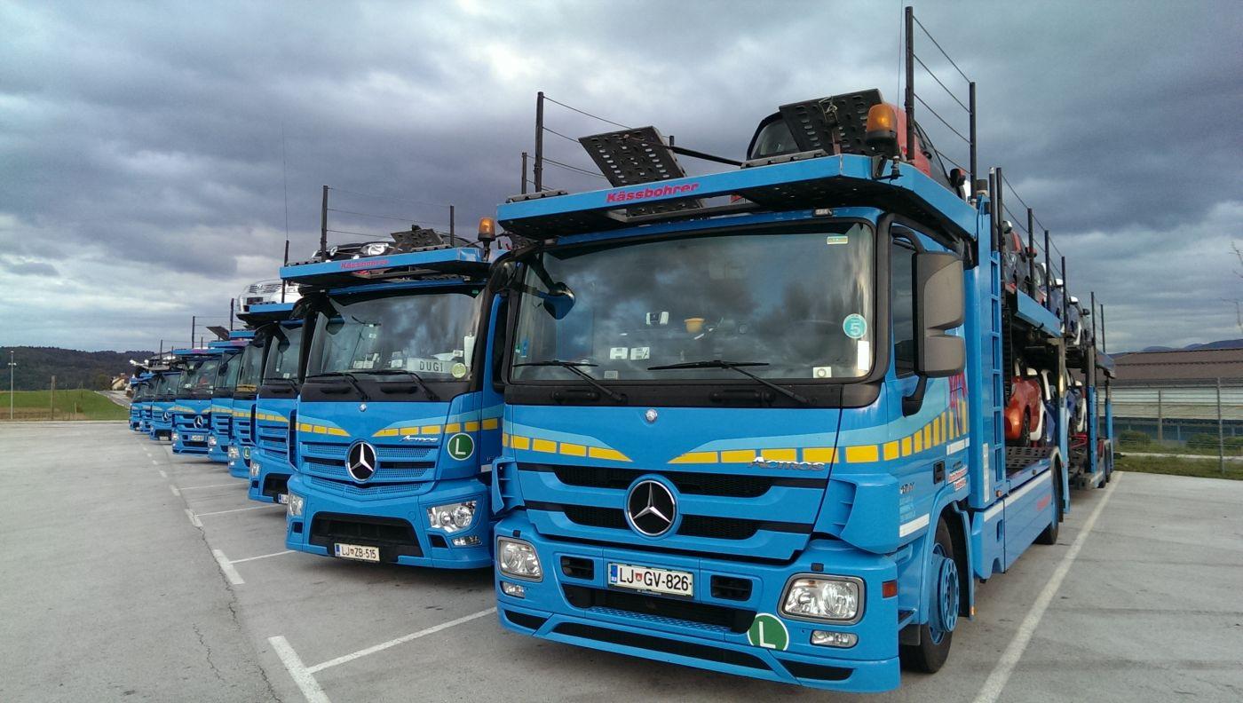 mednarodni prevoz
