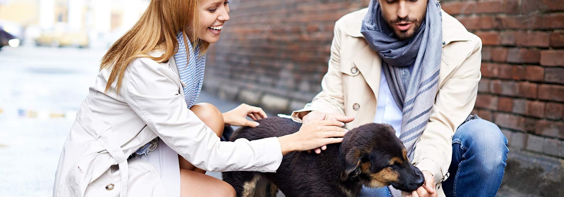 Klinika za male živali Veterinarstvo Trstenjak - Zajc Zdravje vašega ljubljenca - naša skrb!   PREVENTIVA