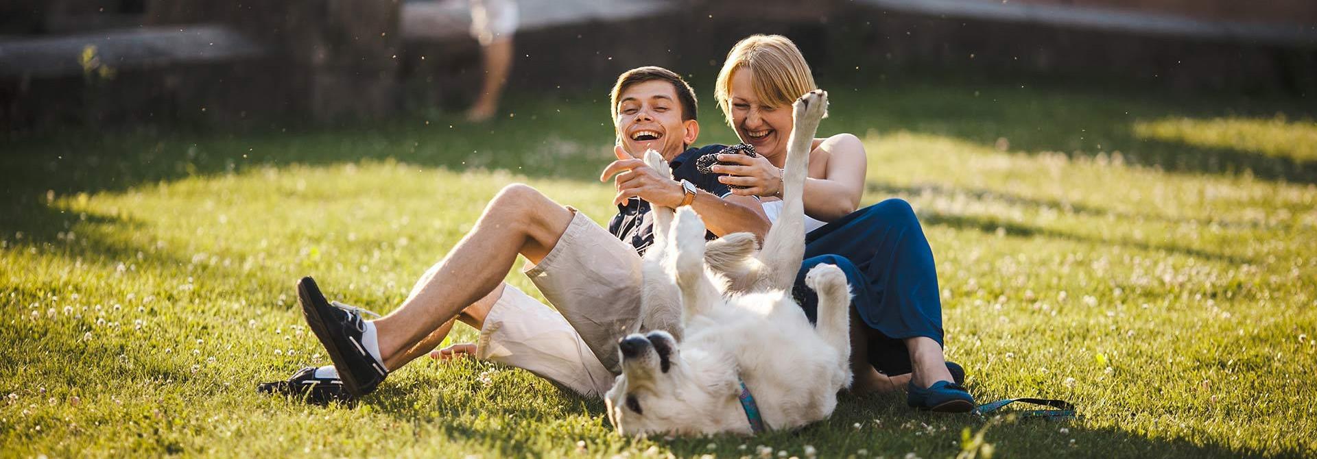 Klinika za male živali Veterinarstvo Trstenjak - Zajc Zdravje vašega ljubljenca - naša skrb!  DIAGNOSTIKA